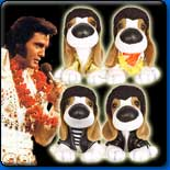 Elvis Hound Dogs In Stock Now! Collect them All.